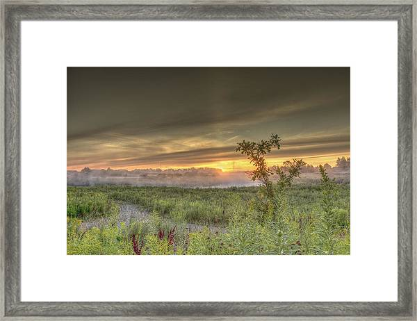 Nature In The Morning Framed Print