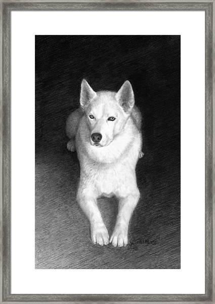 Nykia Framed Print