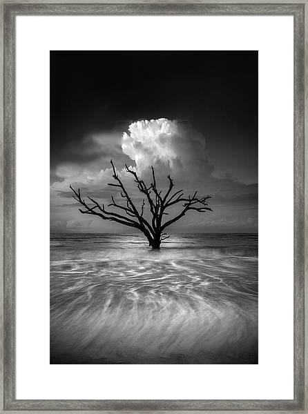 Oceanus Framed Print