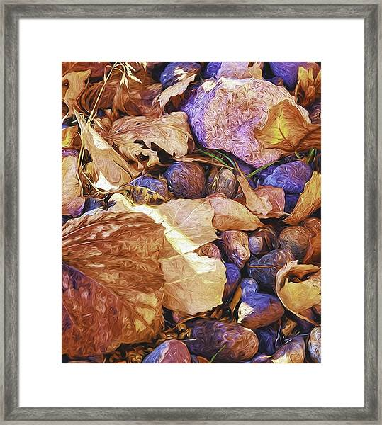 Odds 'n Ends Framed Print by Nancy Marie Ricketts
