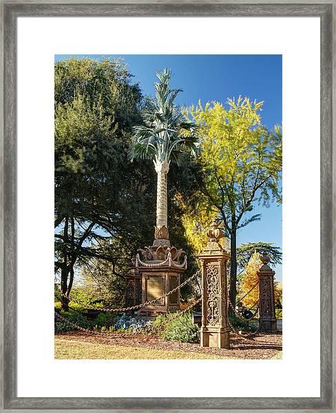 Palmetto Regiment Monument  Framed Print