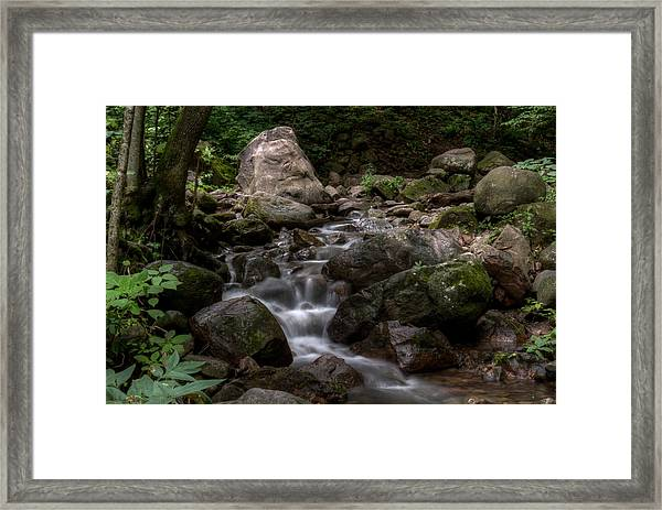 Parfrey's Glen Creek Framed Print