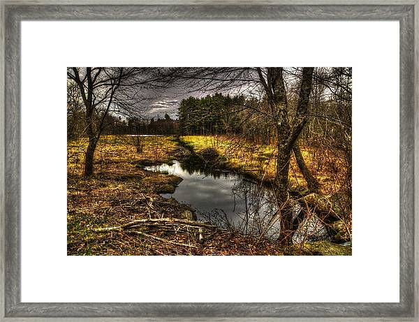 Peacefull Framed Print