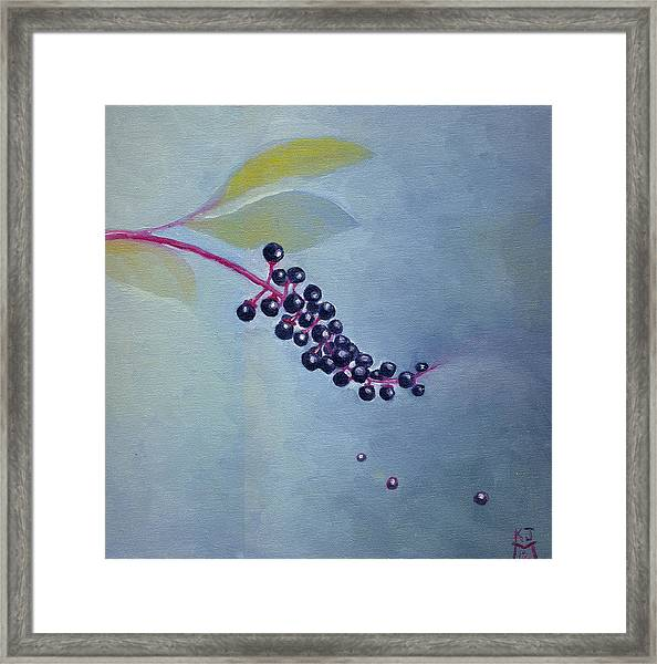 Pokeberries Framed Print