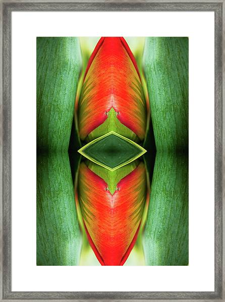 Psychedelic Composite Of Tulip Flower Framed Print