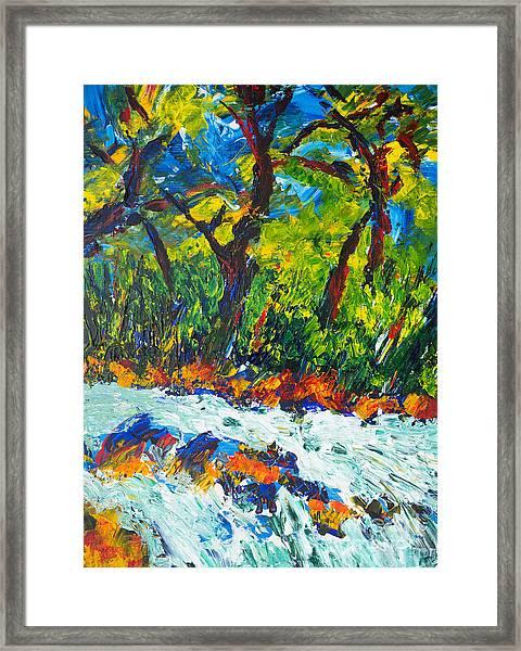 Rapids Framed Print