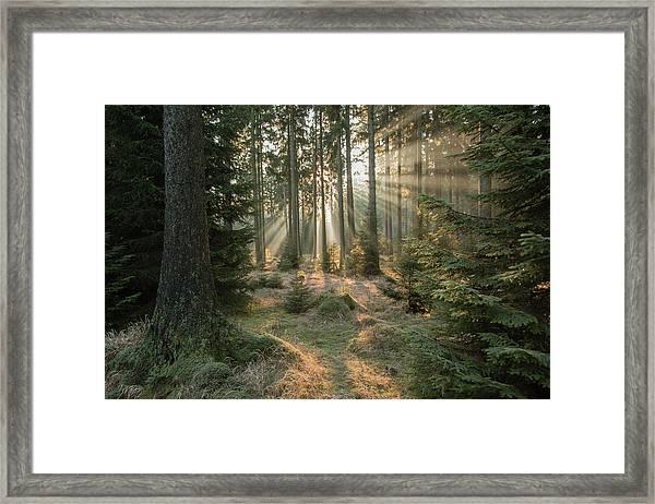 Rays, Part 2 Framed Print