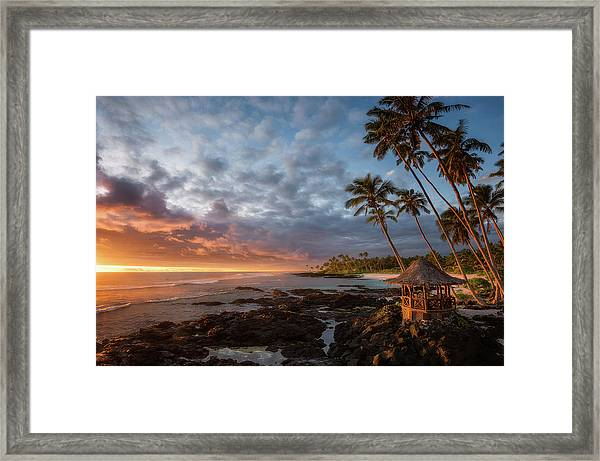 Return To Paradise Framed Print