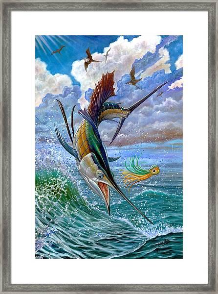 Sailfish And Lure Framed Print