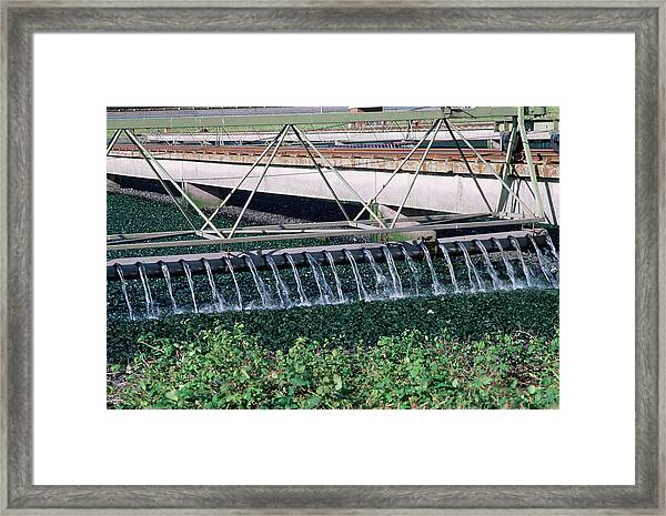 Sewage Works Framed Print by Robert Brook/science Photo Library