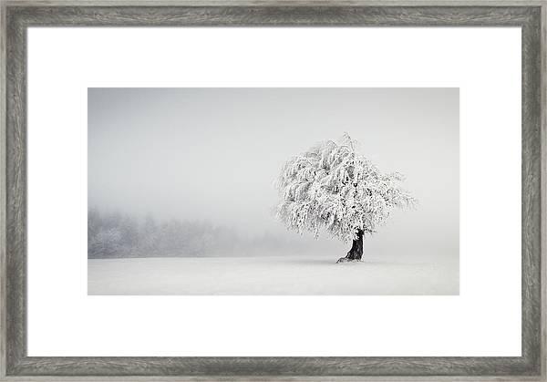 Silence Framed Print by Andreas Wonisch