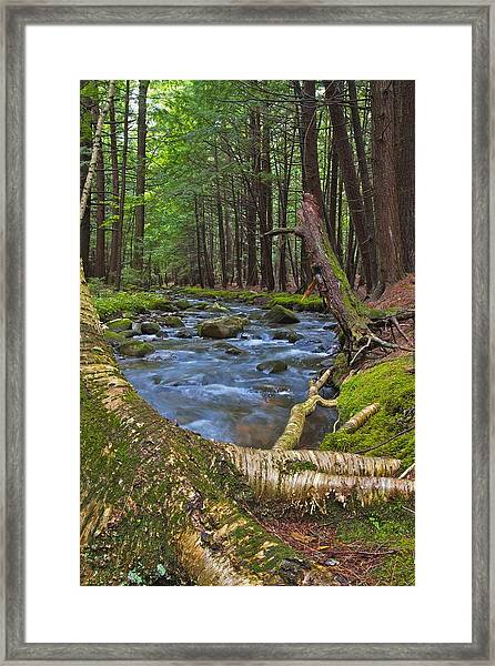 Spirit Of The Stream Framed Print