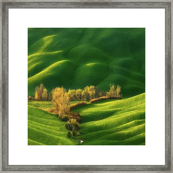 Spring On Fields... Framed Print by Krzysztof Browko