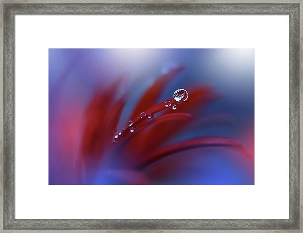 Strange Feelings... Framed Print