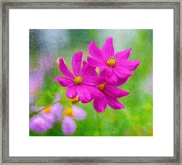 Framed Print featuring the photograph Summer Garden by Garvin Hunter