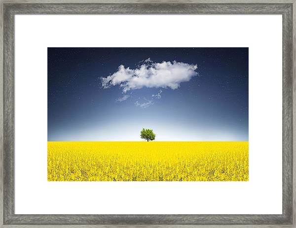 Surreal Canola Field Framed Print