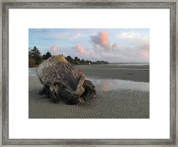 Textures And Patterns Framed Print