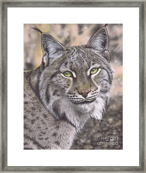 The Lynx Effect Framed Print