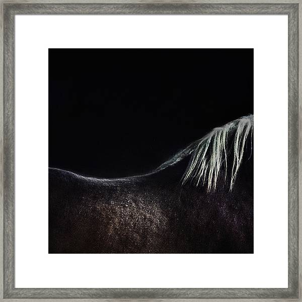 The Naked Horse Framed Print
