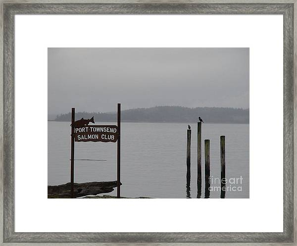 The Salmon Club Framed Print