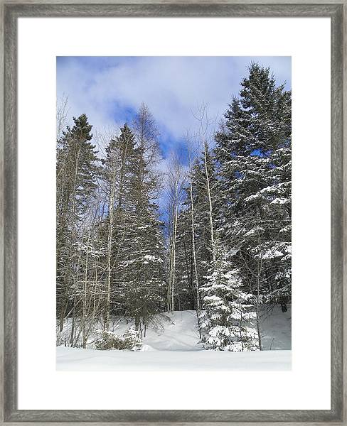 To The Clouds Framed Print by Gene Cyr