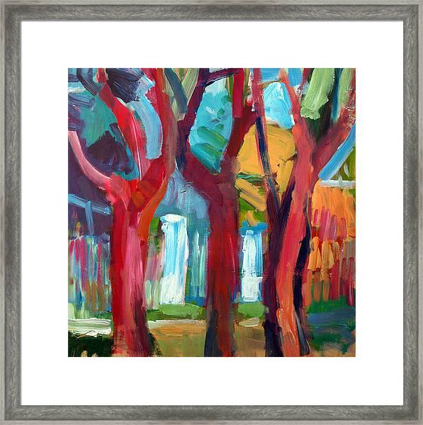 Tree Framed Print by Magdalena Mirowicz