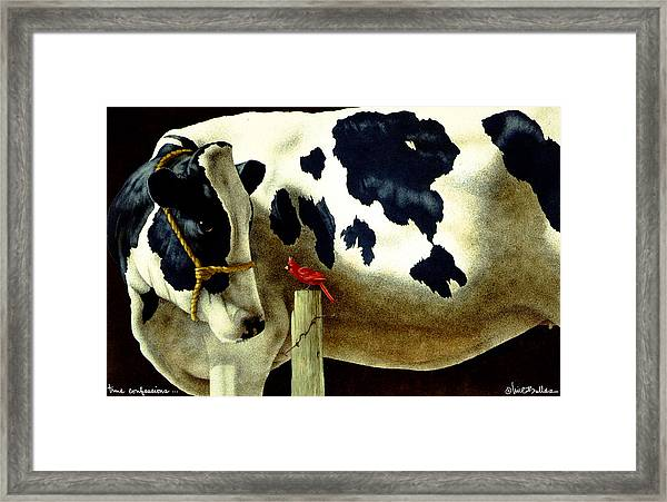 True Confessions... Framed Print
