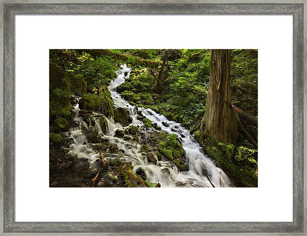 Wahkeena Creek Framed Print
