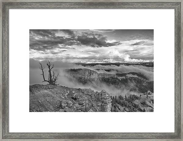 Weathered Framed Print by Darryl Wilkinson