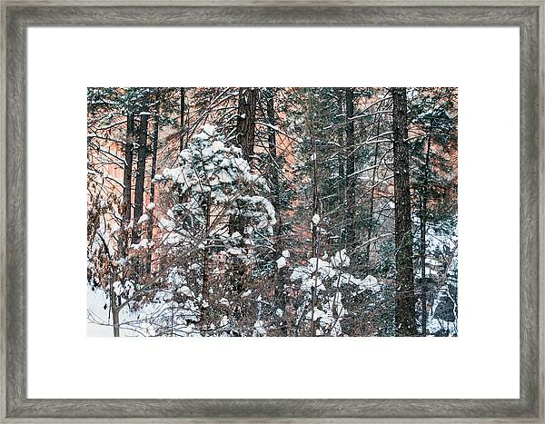 West Fork Snow Framed Print