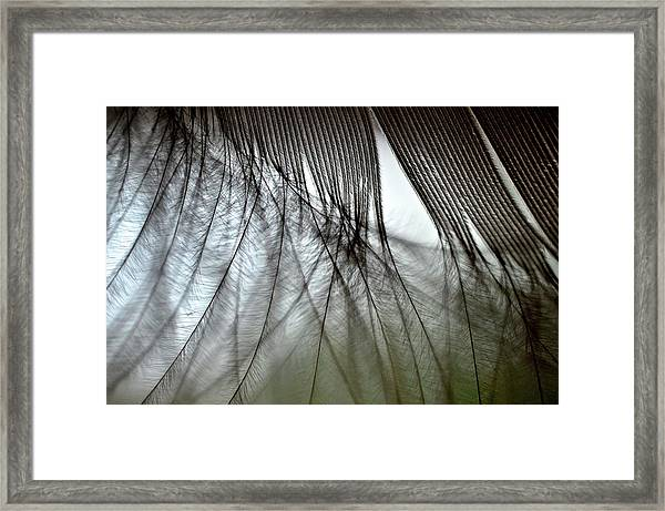 When Dreams Meet Reality Framed Print by Mike Melnotte