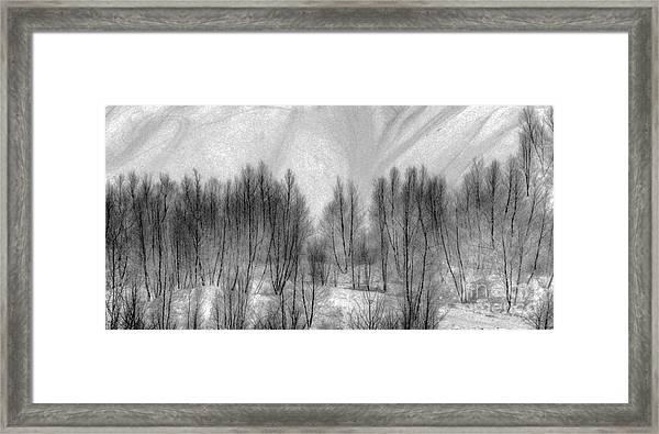 Boney Piles Framed Print