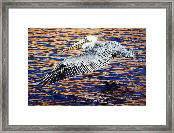 Wind Surfer Framed Print