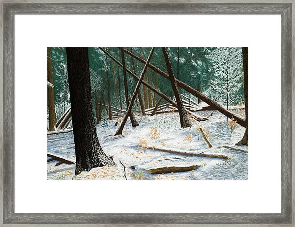 Windswept Woods Framed Print
