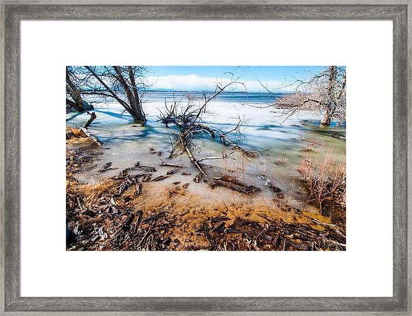 Winter Shore At Barr Lake Framed Print