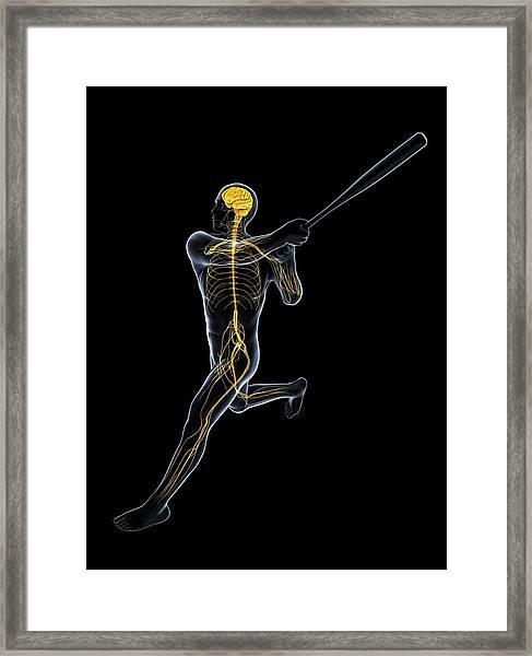 Baseball Player Framed Print
