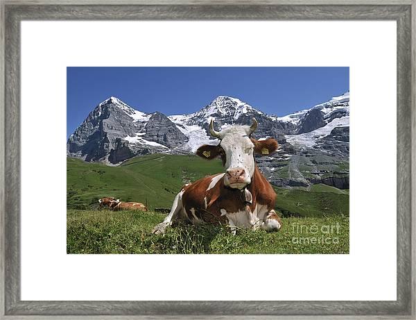 100205p181 Framed Print