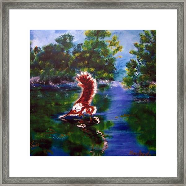 1044426 Digital Eagle Framed Print