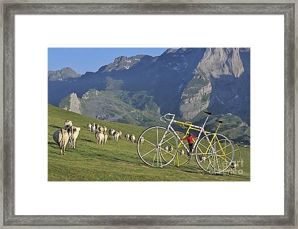 120520p230 Framed Print