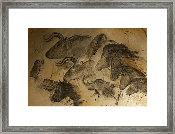 131018p051 Framed Print