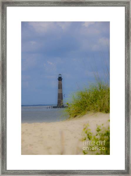 Wood View Framed Print