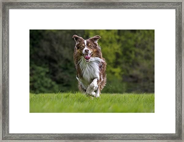 140420p079 Framed Print