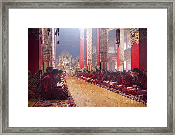 141220p194 Framed Print