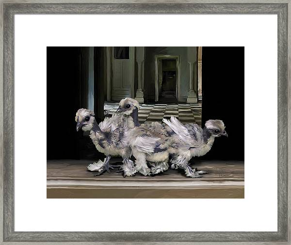 15. Lizard Chicks Framed Print