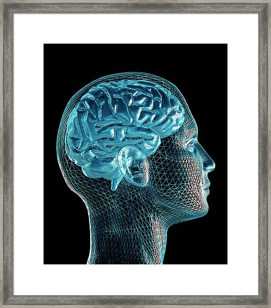 Brain Framed Print by Pasieka