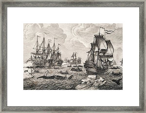 18th Century Dutch Whaling Fleet Framed Print by George Bernard/science Photo Library