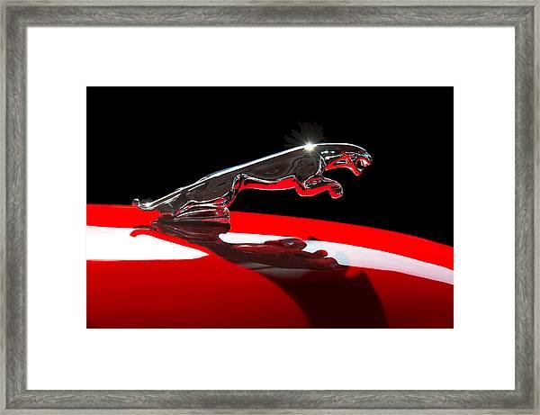 1961 Jaguar Kougar Hood Ornament -0569c Framed Print