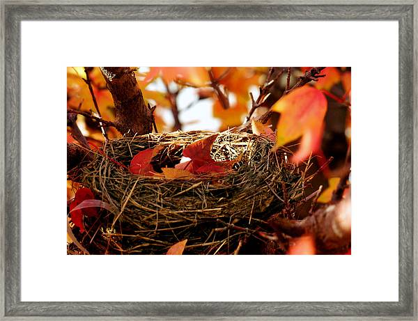 A Clutch Of Color Framed Print