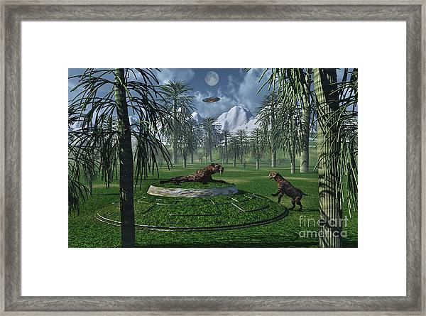 A Pair Of Sabre-tooth Tigers Framed Print