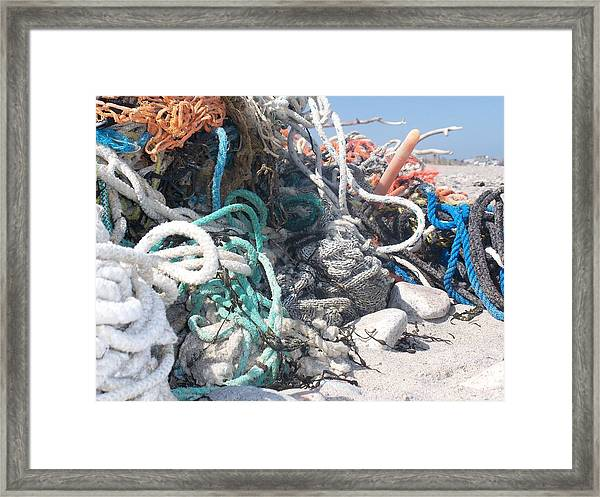 All Knoted Up  Framed Print